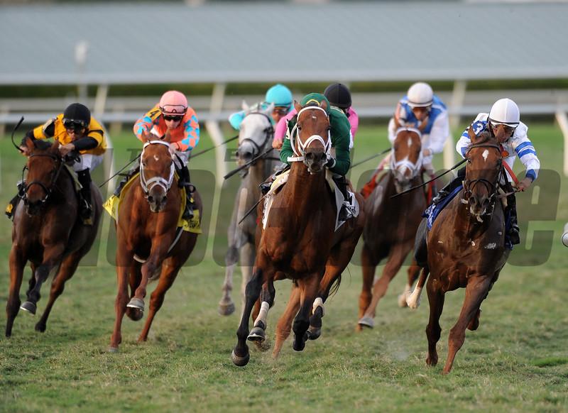 Grand Tito wins the 2016 Mac Diarmida Stakes.<br /> Coglianese Photos/Arianna Spado