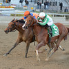 Highway Star wins the 2016 Go for Wand<br /> Coglianese Photos/Joe Labozzetta