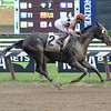 Stallwalkin' Dude wins the 2016 Tale of the Cat Stakes.<br /> Coglianese Photos