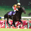 Logotype wins the Yasuda Kinen in Japan<br /> Maskazu Takahashi