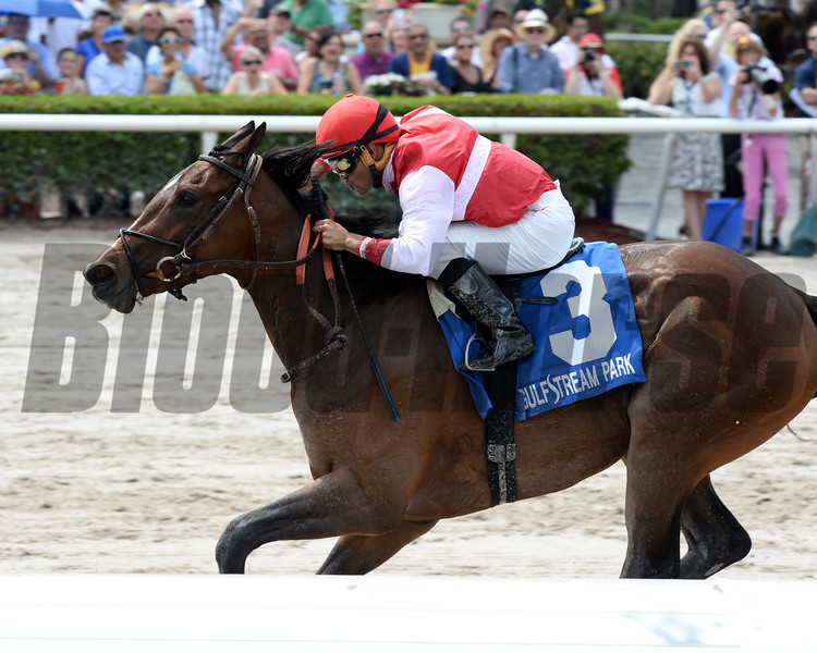 Go Maggie Go wins the 2016 Gulfstream Park Oaks. <br /> Coglianese Photos/Lauren King