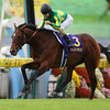 Satono Diamond wins the 2016 Kikuka Sho <br /> Masakazu Takahashi