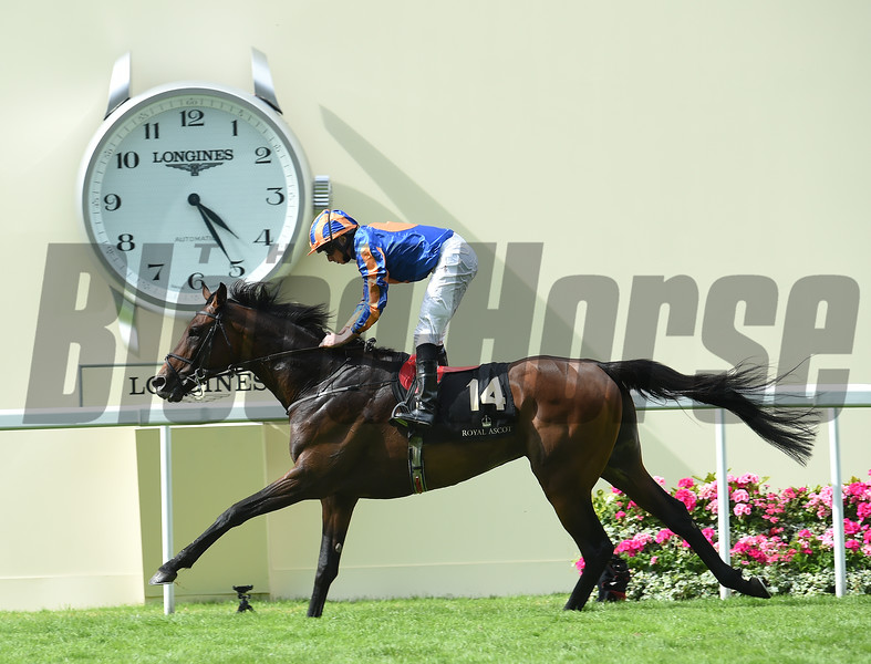 Order of St George (IRE) wins The Gold Cup (In Honour Of The Queen's 90th Birthday) Stakes at Royal Ascot June 16, 2016.<br /> Mathea Kelley Photo
