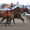 Highway Star wins the 2016 Go for Wand<br /> Coglianese Photos/Chelsea Durand