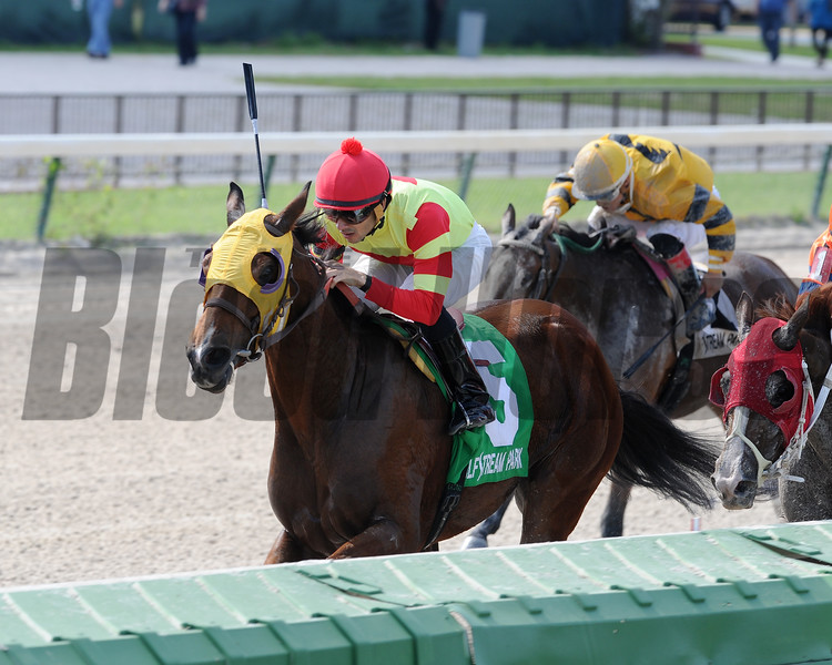 Moment of Delight wins the 2016 Millions Distaff Preview Stakes<br /> Coglianese Photos/Kenny Martin