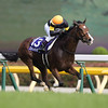 Straight Girl (JPN) wins the Victoria Mile in Japan May 15, 2016.<br /> Masakazu Takahashi Photo