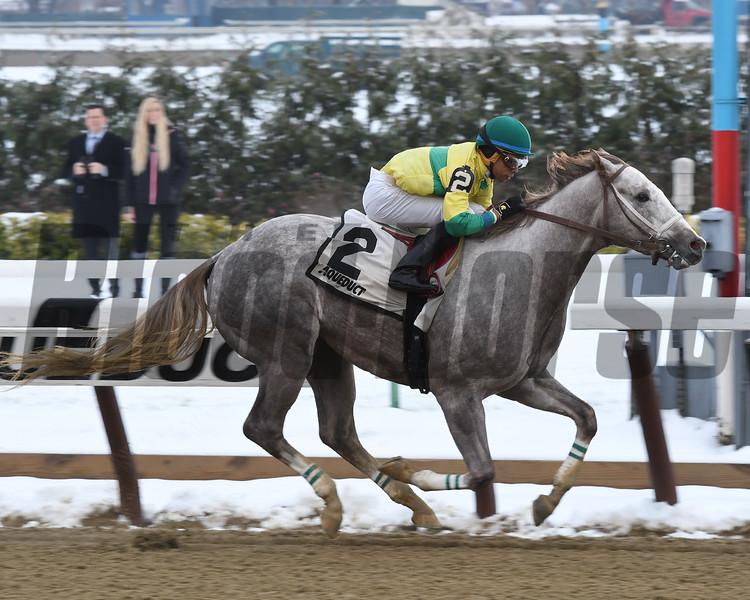 Bavaro wins the 2016 Great White Way Division of the New York Stallion Series Stakes<br /> Coglianese Photos/Susie Raisher