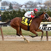 Send It In wins the 2016 Alex M. Robb Stakes<br /> Coglianese Photos