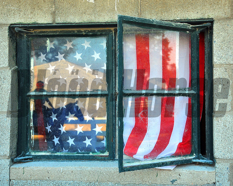 Patriotic Window