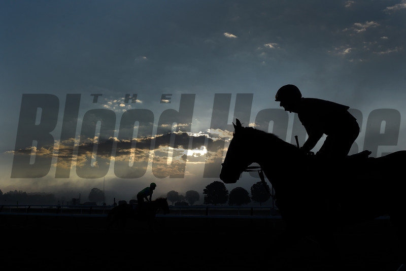 A beautiful morning with a mixture of light fog and cloud cover as horses exercise at the Saratoga Race Course Friday Aug. 19, 2016.   (Skip Dickstein