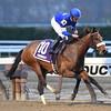 Filibustin wins the 2016 Key Cents Stakes<br /> Coglianese Photos