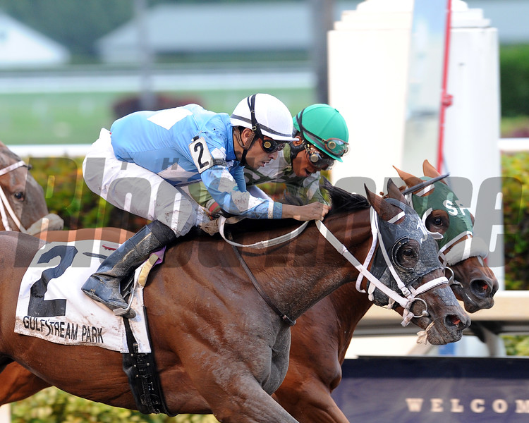 Cajun Delta Dawn wins the 2016 Florida Sire -  Desert Vixen Stakes.<br /> Coglianese Photos/Lauren King