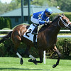 Sentiero Italia - Allowance Win, July 22, 2016.<br /> Coglianese Photos