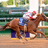 Paid Up Subscriber wins the Fleur de Lis (gr. II)<br />  at Churchill Downs on June 18, 2016.