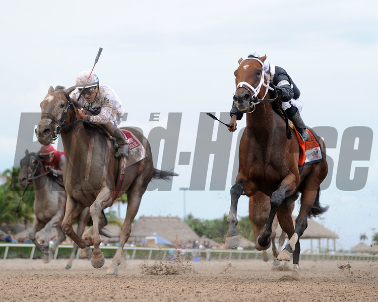Spelling Again wins the 2016 Princess Rooney Stakes.     <br /> Coglianese Photos