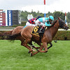 Dacita wins the 2016 Diana.<br /> Coglianese Photos