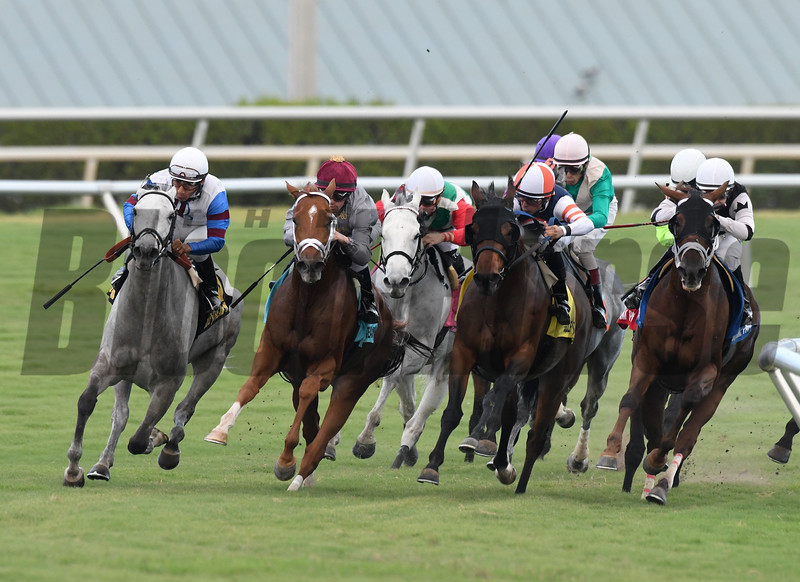 Neck of the Moon wins the 2016 South Beach Stakes<br /> Coglianese Photos/Andie Biancone