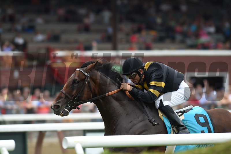Long On Value wins the Lucky Coin Stakes at Saratoga July 25, 2016.<br /> Photo by Coglianese Photos/Chelsea Durand