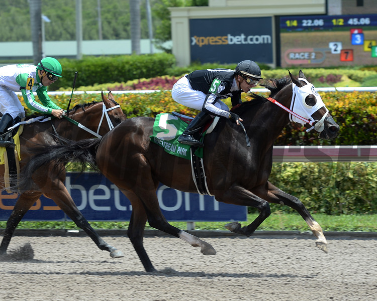 R Kinsley Doll wins the 2016 Florida Sire Three Ring Stakes.<br /> Coglianese Photos/Leslie Martin