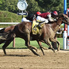 Haveyougoneaway wins the 2016 Honorable Miss.<br /> Coglianese Photos