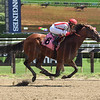 Practical Joke, Saratoga; August 6 2016; 2016; first start, first win, maiden special, Irad Ortiz Jr.;