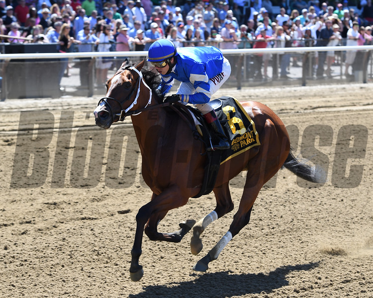 Kareena wins the Jersey Girl Stakes.<br /> Coglianese Photos/Chelsea Durand