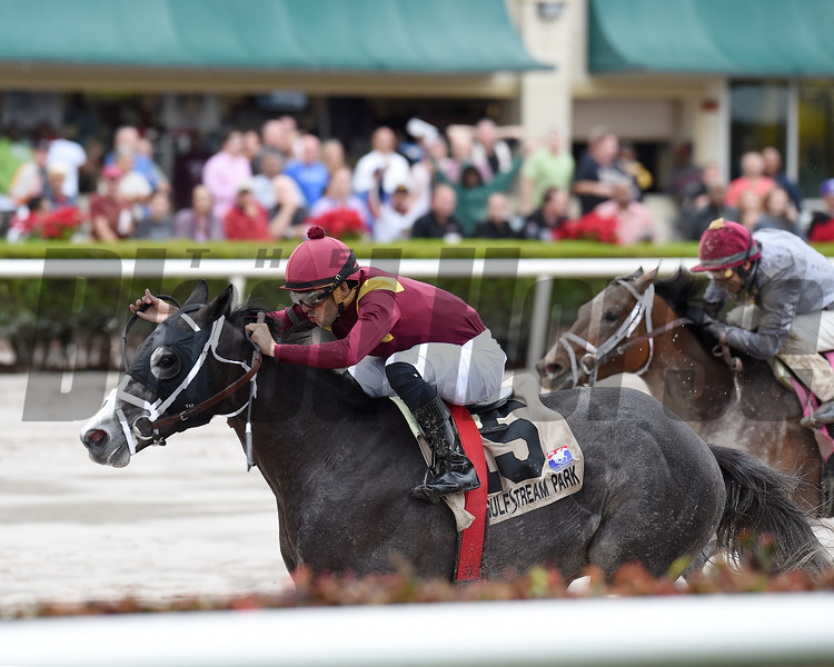 Tapwrit wins the 2016 Pulpit Stakes<br /> Coglianese Photos/Andie Biancone