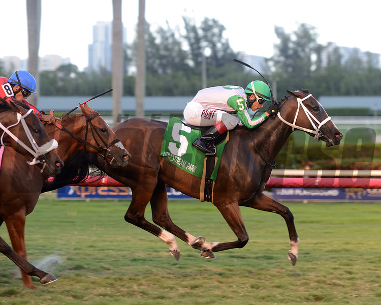 Pink Poppy wins the 2016 Wasted Tears<br /> Coglianese Photos/Leslie Martin