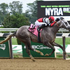 Fish Trappe Road wins the 2016 Dwyer.<br /> Coglianese Photos/Susie Raisher