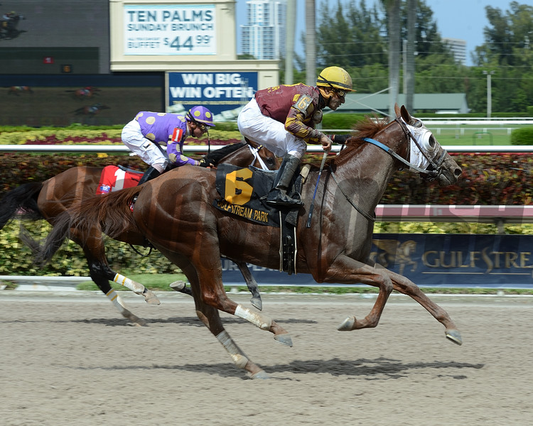 Rated R Superstar wins the 2016 Carry Back Stakes.<br /> Coglianese Photos/Leslie Martin