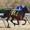 Hemsworth wins the 2016 Nashua Stakes<br /> Coglianese Photos/Chelsea Durand