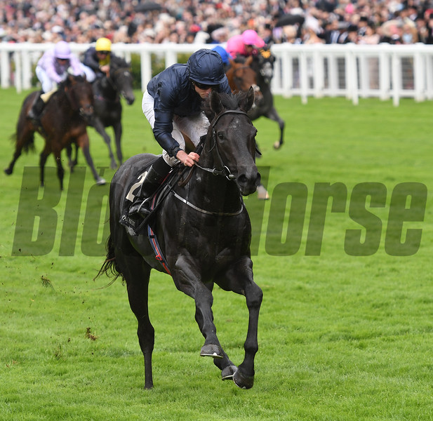 Caravaggio wins the Conventry Stakes at Royal Ascot June 14, 2016<br /> Mathea Kelley Photo