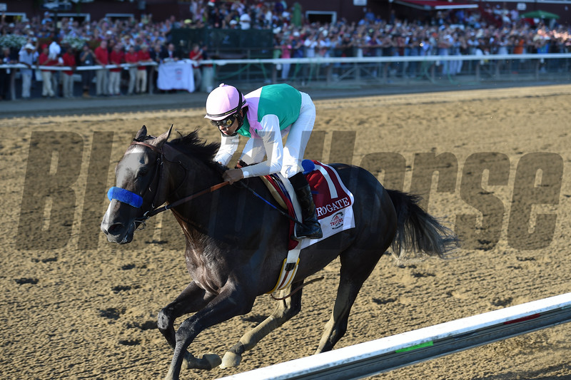 Arrogate wins the 2016 Travers.<br /> Coglianese Photos/Chelsea Durand