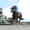 Cajun Delta Dawn wins the 2016 Florida Sire Series - Susan's Girl Division. <br /> Coglianese Photos/Leslie Martin