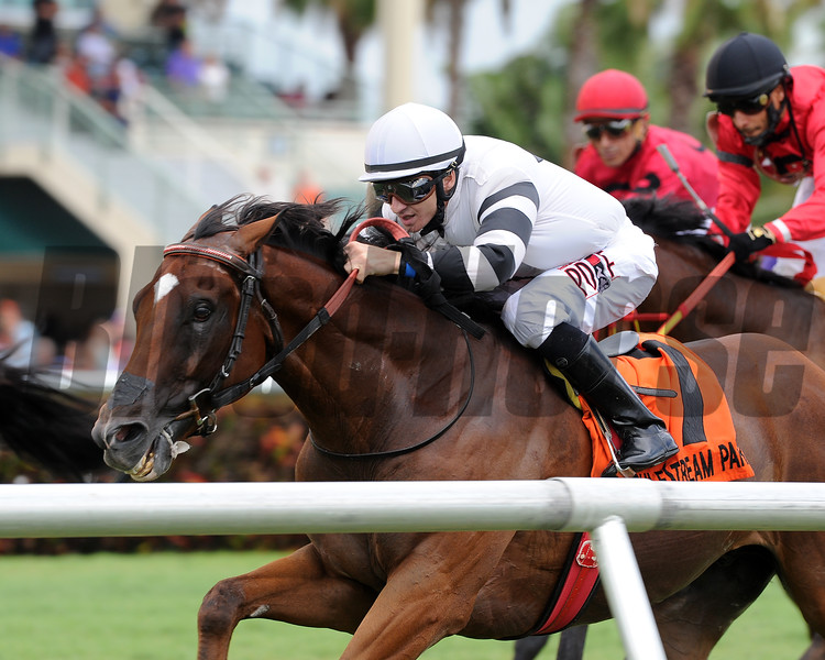 Aire Bueno wins the 2016 Miesque's Approval Stakes.<br /> Coglianese Photos/Lauren King