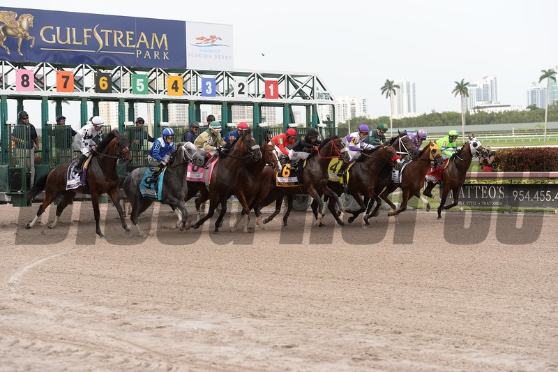 Nyquist wins the 2016 Florida Derby - Start<br /> Coglianese Photos
