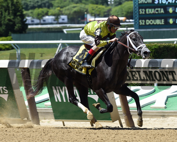 Silver Mission wins the 2016 Tremont Stakes.<br /> Coglianese Photos