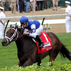 Tepin Distaff Turf Mile Churchill Downs Chad B. Harmon