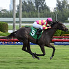 Okinawa - Maiden Win, Gulfstream Park, December 17, 2016<br /> Coglianese Photos/Leslie Martin