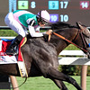 Arrogate Travers Mike Smith Saratoga Chad B. Harmon