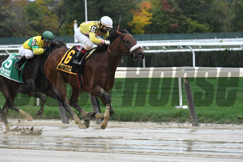 Royal Posse wins the 2016 Empire Classic<br /> Coglianese Photos/Annette Jasko
