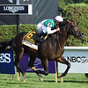 Flintshire wins the 2016 Sword Dancer.<br /> Coglianese Photos/Chelsea Durand