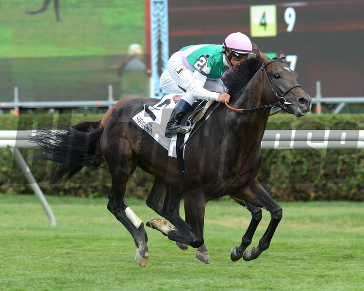Flintshire wins the 2016 Bowling Green.<br /> Coglianese Photos/Susie Raisher