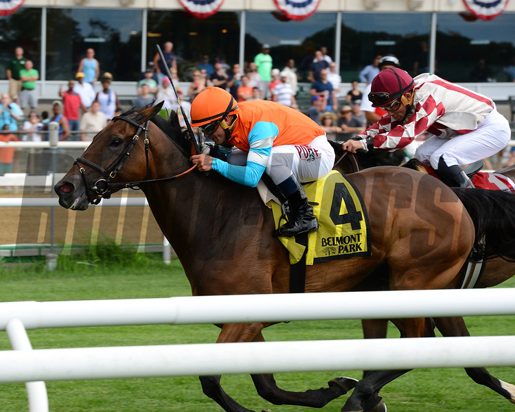 Guapaza wins the 2016 River Memories Stakes.<br /> Coglianese Photos/Joe Labozzetta