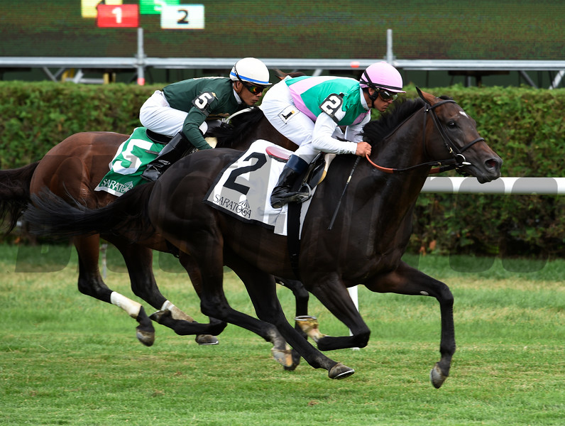 Flintshire wins the 58th running of The Bowling Green at Saratoga 7/30/16.  Photo by Skip Dickstein