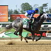 Frosted wins the 2016 Met Mile (gr. I)<br /> Coglianese Photos/Susie Raisher