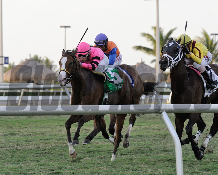 Miss Matzoball wins the 2016 Captiva Island Handicap.<br /> Coglianese Photos/Kenny Martin