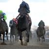 Mo Town wins the 2016 Remsen Stakes<br /> Coglianese Photos
