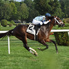 Made You Look wins the With Anticipation Stakes at Saratoga Aug. 31.<br /> Coglianese Photo