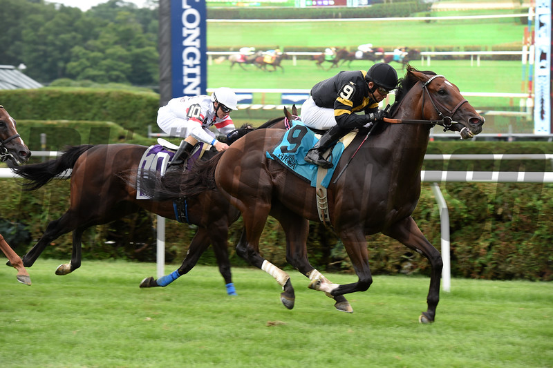 Long On Value wins the Lucky Coin Stakes at Saratoga July 25, 2016.<br /> Coglianese Photos/Chris Rahayel Photo
